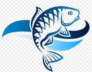 fishbiopedia.com